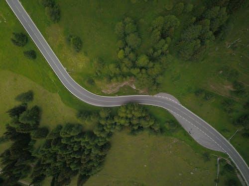 Foto d'estoc gratuïta de arbres, carretera, foto aèria, foto des d'un dron