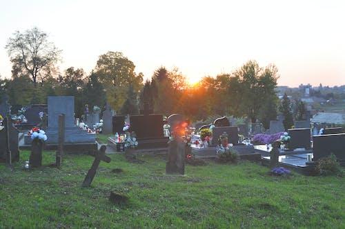 Fotos de stock gratuitas de ambiente, arboles, cementerio, cielo al atardecer