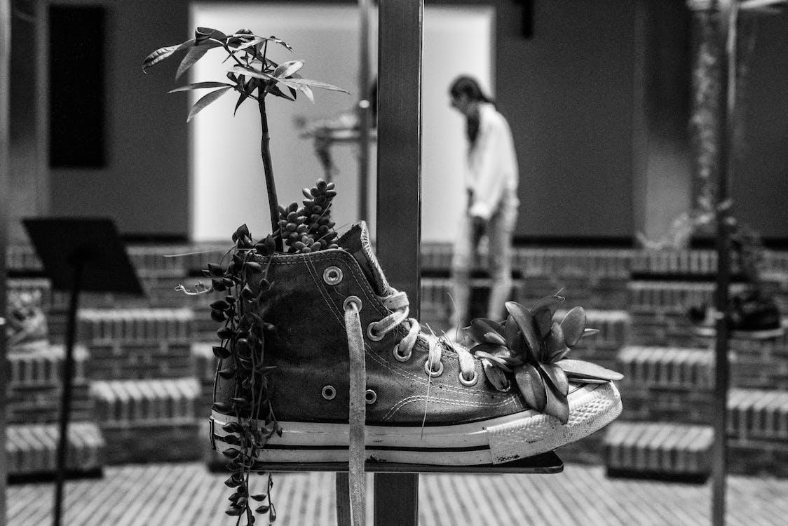 monokromatik, sepatu