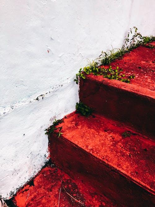 Foto d'estoc gratuïta de a l'aire lliure, brut, color, escales