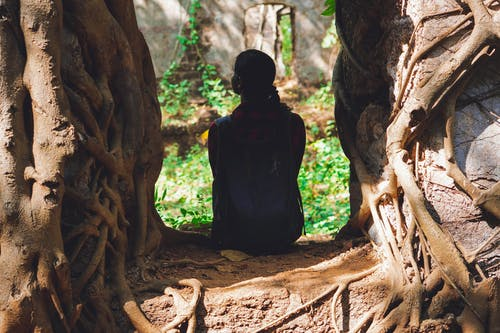 Person Sitting Under Tree