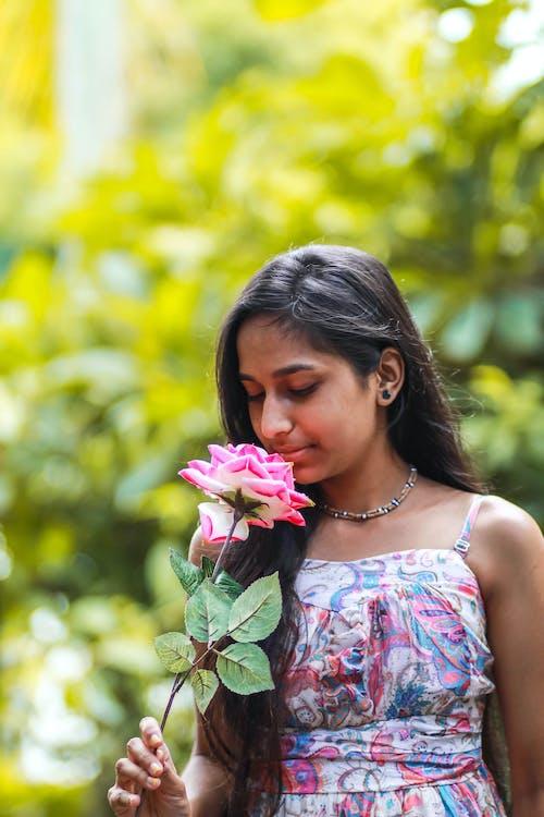 คลังภาพถ่ายฟรี ของ กลางแจ้ง, กลิ่น, ก้านดอก, การถ่ายภาพ