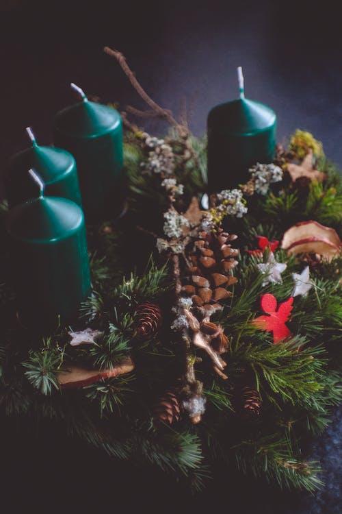 Kostenloses Stock Foto zu kerzen, nadelbaum, weihnachten