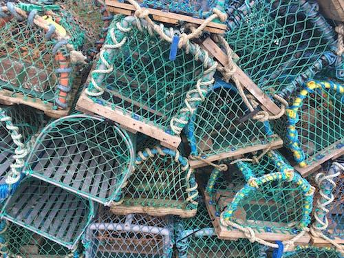 Balık tutmak, conwy, Galler, Istakoz içeren Ücretsiz stok fotoğraf