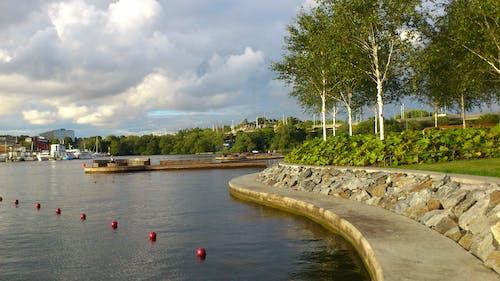 Kostnadsfri bild av moln, strand park, vatten
