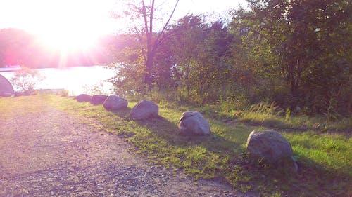 Kostnadsfri bild av solljus, stenar