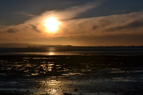 Free stock photo of beach, golden hour, Manukau Harbour, sunset