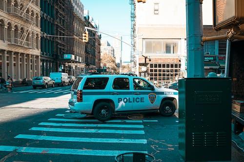 Foto profissional grátis de América, automóvel, centro da cidade, cidade