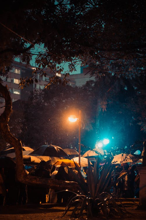 Free stock photo of night, rain, riot