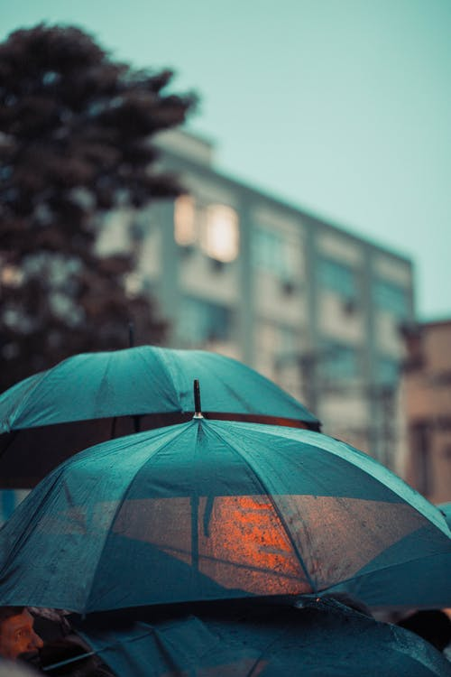 Selective Focus Photo of Umbrellas