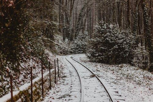 Бесплатное стоковое фото с железная дорога, зима, простуда, снег