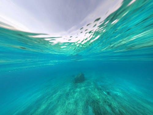 Free stock photo of blue ocean, mexico, underwater