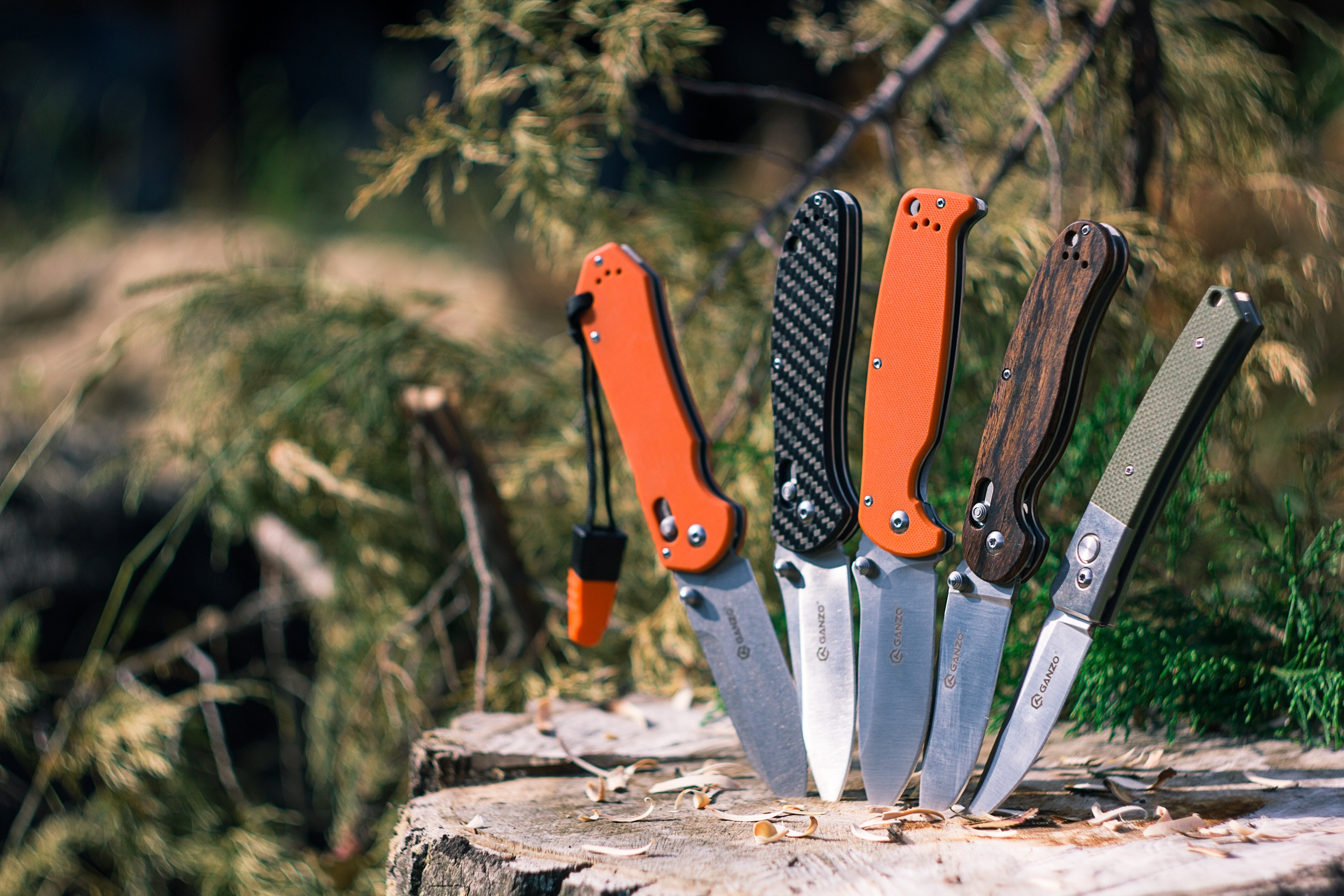 Five Pocketknives Impaled on Tree Trunk