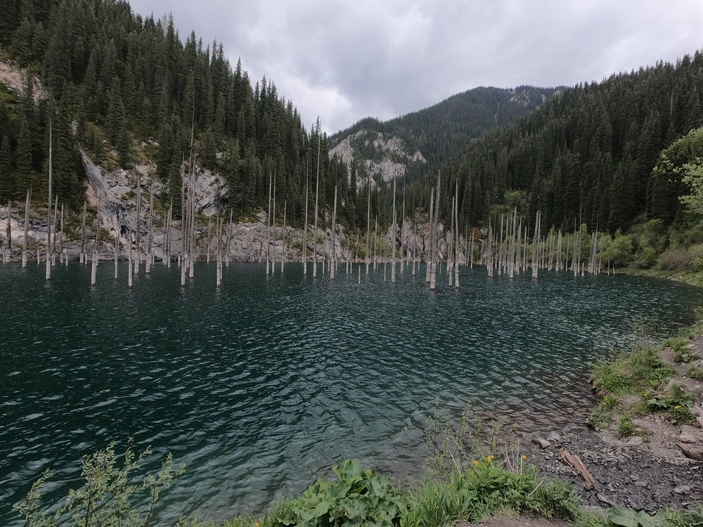 Foto profissional grátis de kolsai lake