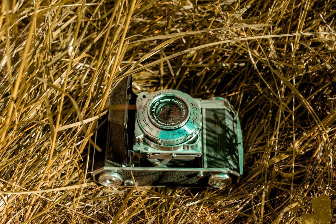câmera, câmera antiga, câmera velha