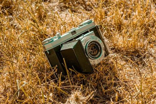 คลังภาพถ่ายฟรี ของ lofi, กล้อง, กล้องฟิล์ม, กล้องภาคสนาม