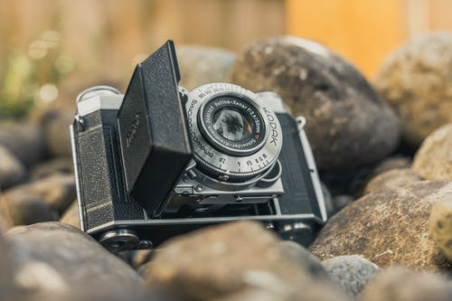 Black and Gray Kodak Point-and-shoot Camera Macro Photography