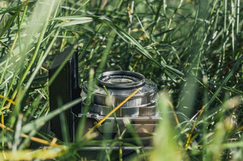 Ilmainen kuvapankkikuva tunnisteilla kamera, Klassinen, ruoho, vanha kamera
