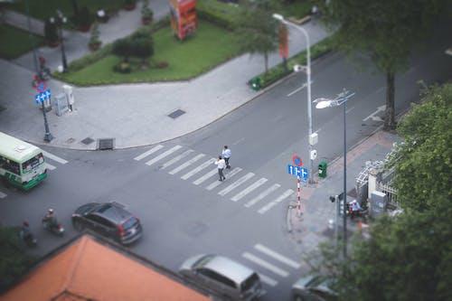Two Person Walking on Pedestrian Lane