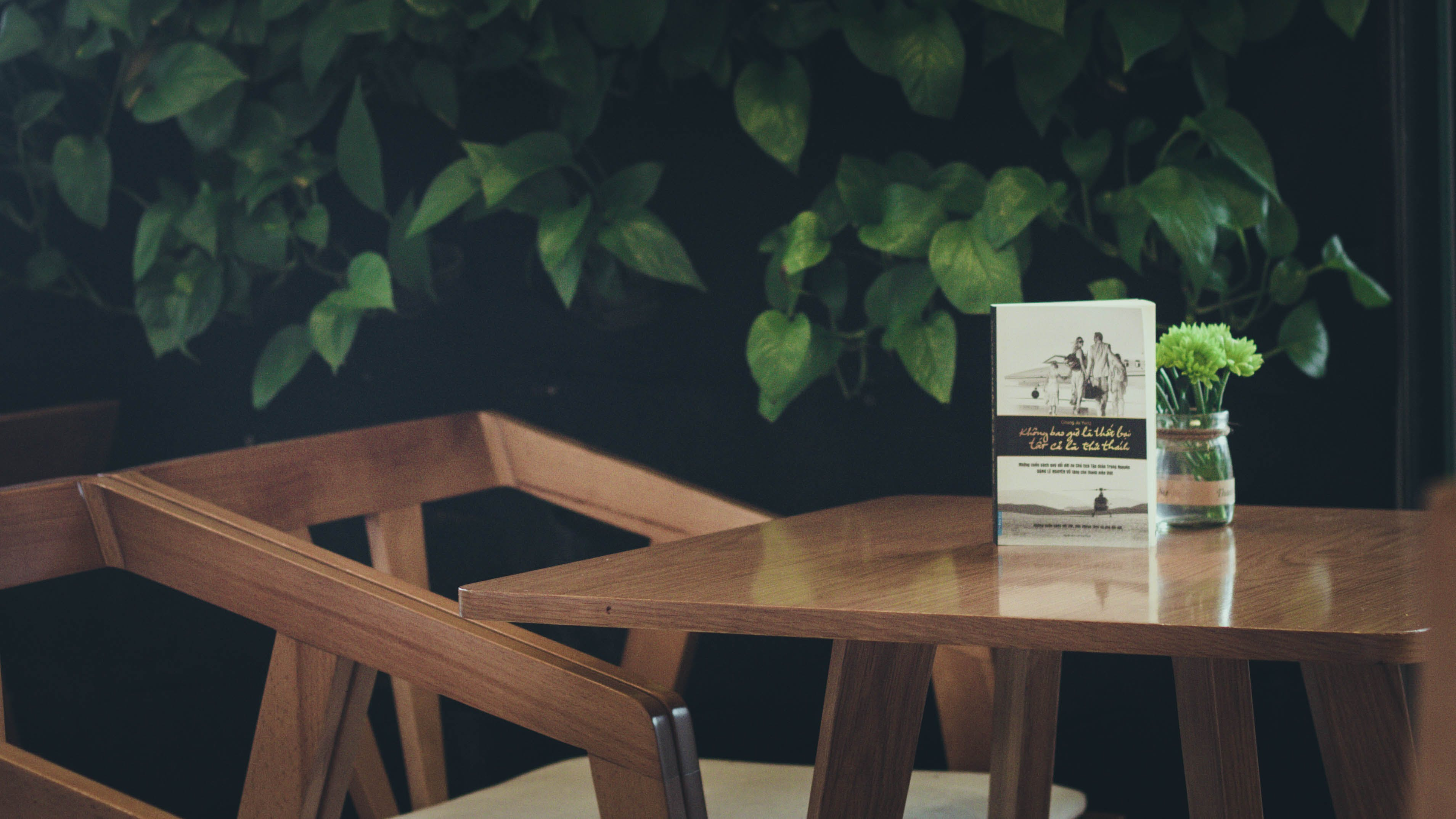 Selective Focus Photography of Book and Green Leafed Plant on Table