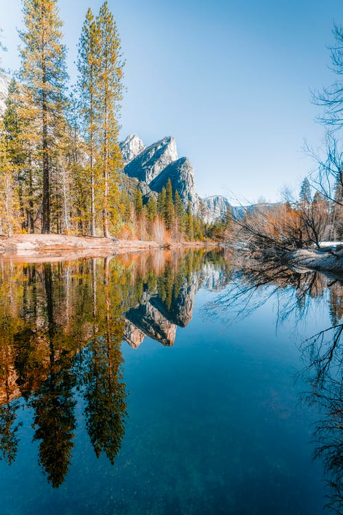 Kostenloses Stock Foto zu baum, draußen, felsiger berg, landschaft