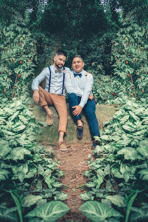 LGBT-H, 一對, 一起, 人 的 免费素材照片