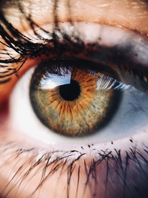 200 Eye Photos Pexels Free Stock Photos