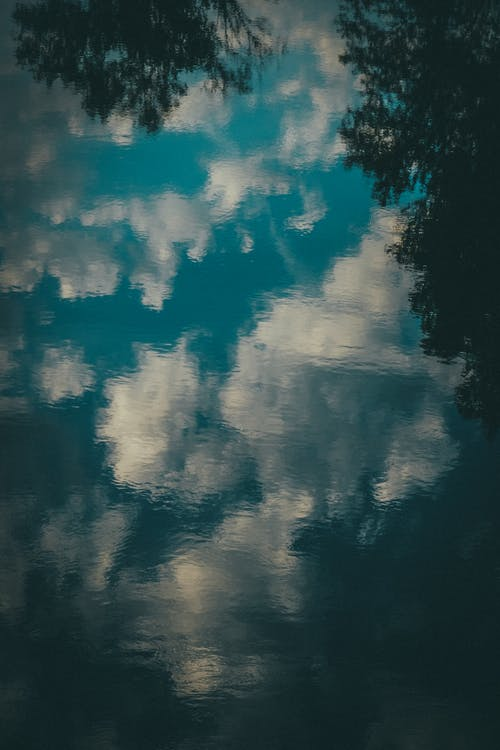 Photos gratuites de abstrait, arbres, ciel, espace extérieur