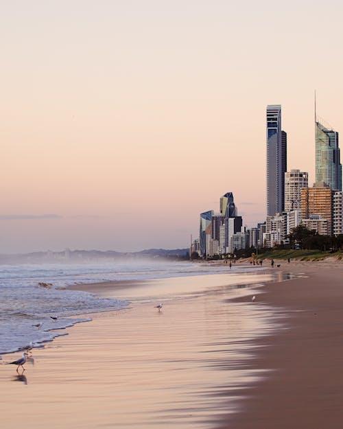 Gratis arkivbilde med arkitektur, australia, by, bygninger