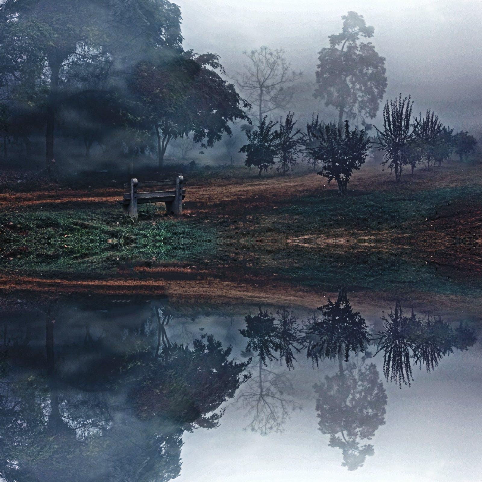 Kostenloses Stock Foto zu bäume, draußen, fluss, idyllisch