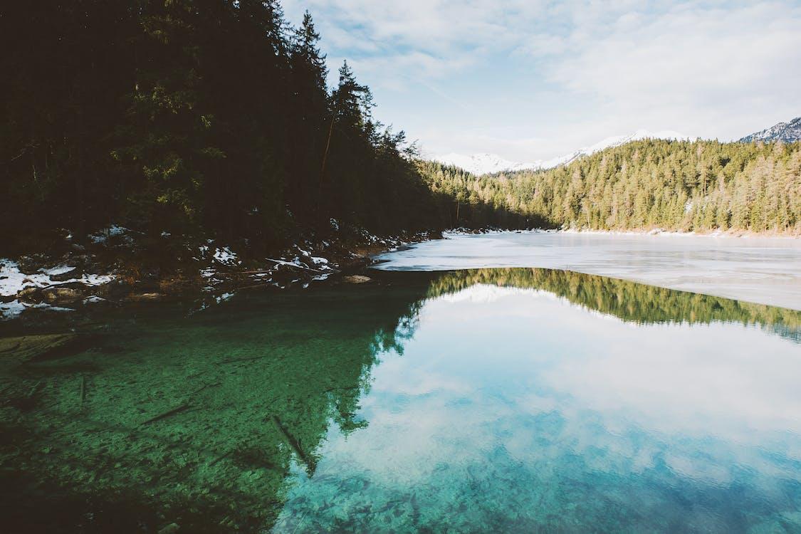 heijastus, järvi, joki