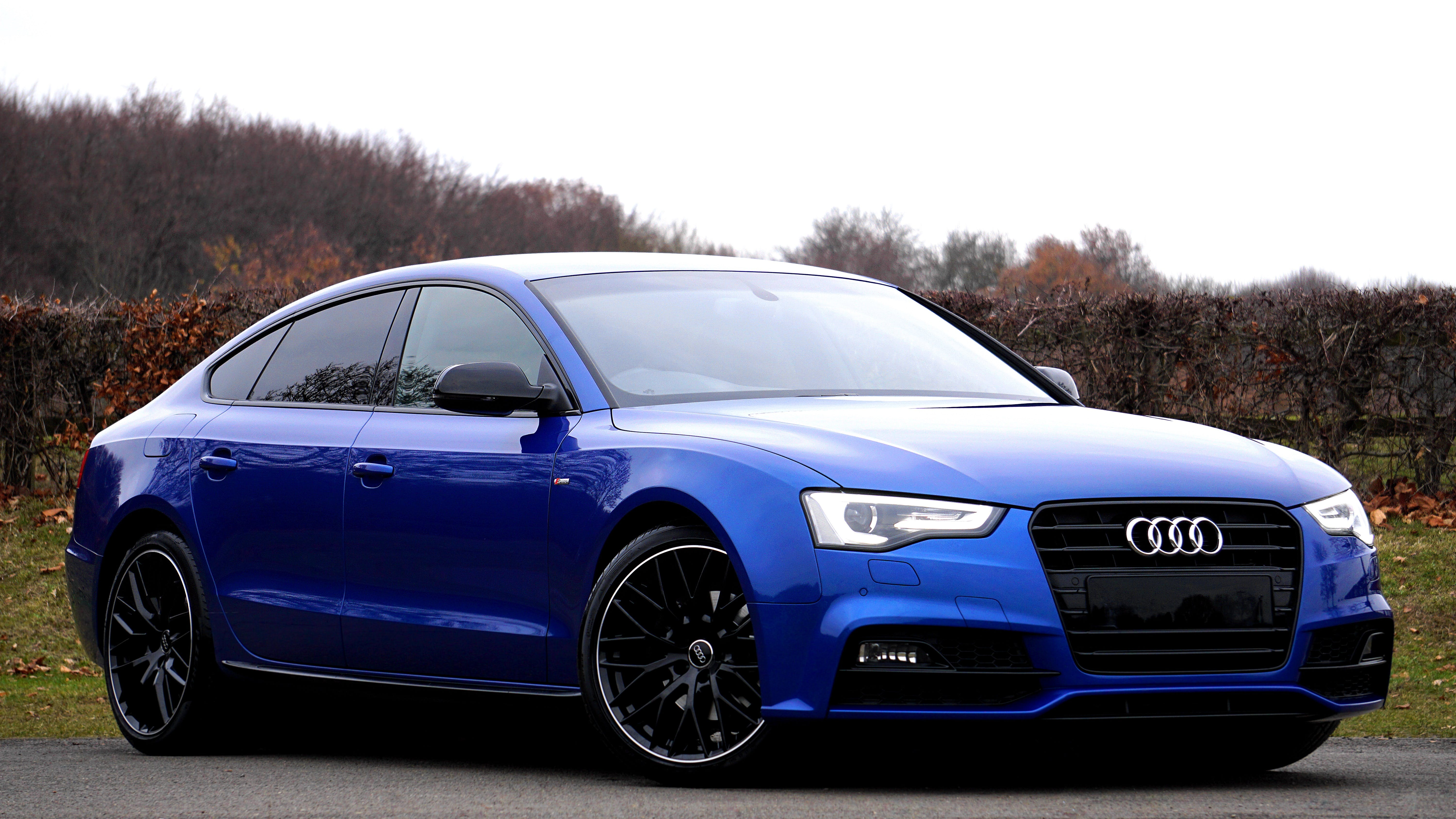 Blue Audi Sedan Parked Near Forest