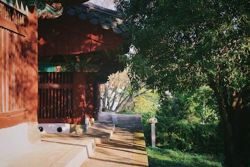 Kostnadsfri bild av koreansk stil hus, natur