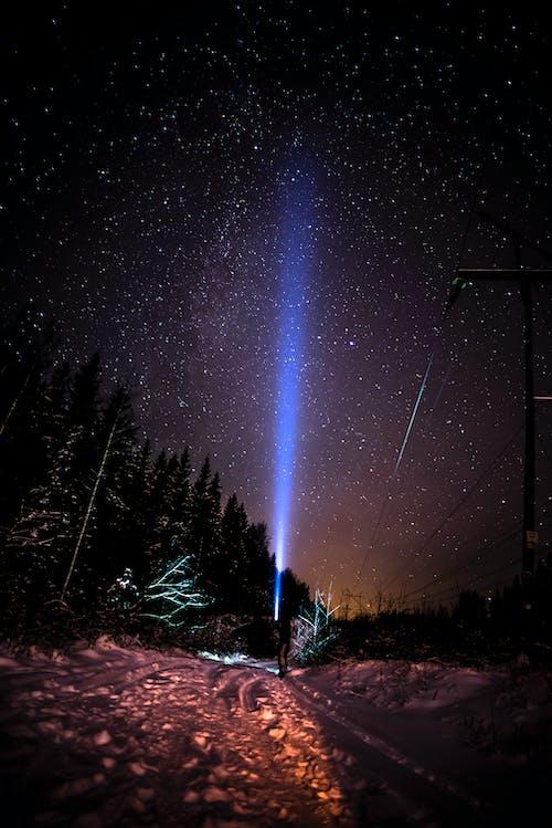 Photos gratuites de arbres la nuit, astronomie, célébrités, ciel