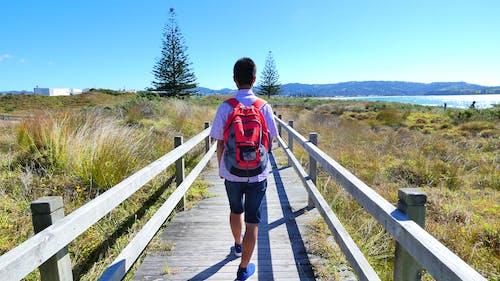Foto d'estoc gratuïta de adolescent, caminada, festiu