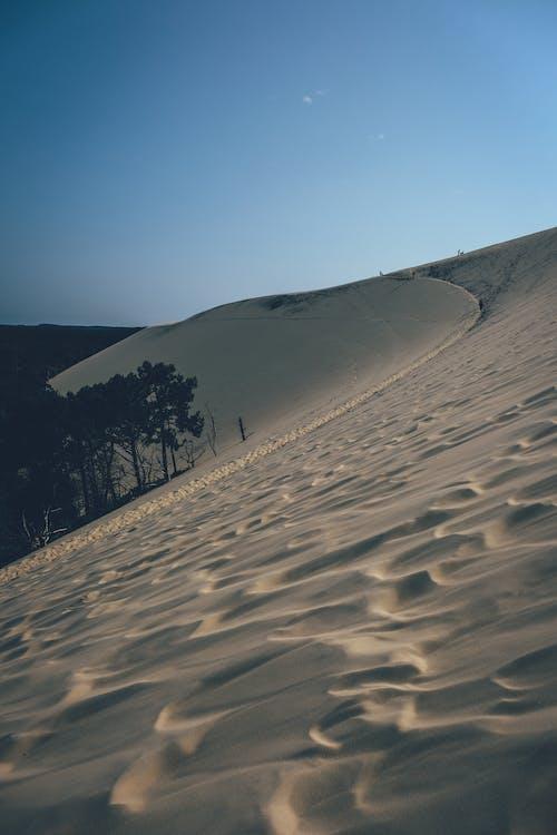 Fotobanka sbezplatnými fotkami na tému arídny, duna, neúroda, pieskové duny