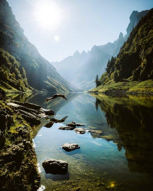 강, 경치, 경치가 좋은, 골짜기의 무료 스톡 사진