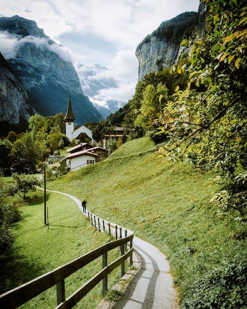 Kostenloses Stock Foto zu abenteuer, alpen, bäume, beratung