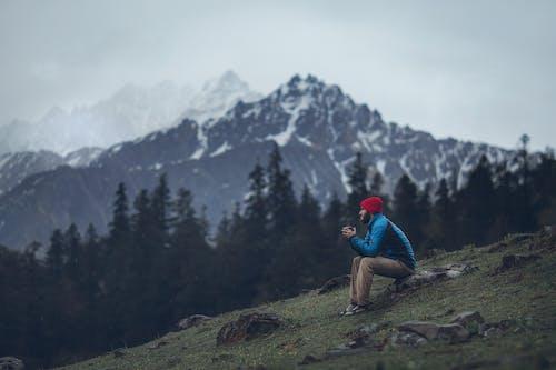 Fotos de stock gratuitas de al aire libre, arboles, aventura, caminante