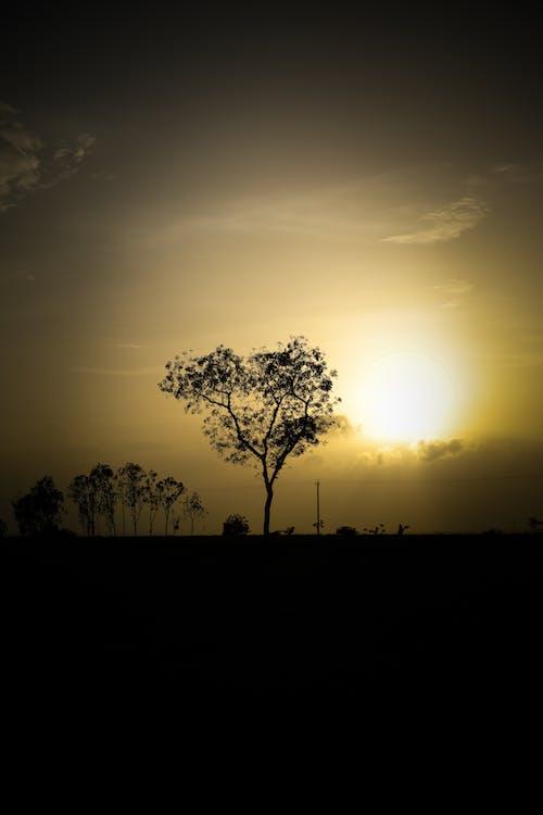 คลังภาพถ่ายฟรี ของ ตะวันยามเย็น, ท้องฟ้าตอนเย็น, บรรยากาศตอนเย็น, อินเดีย