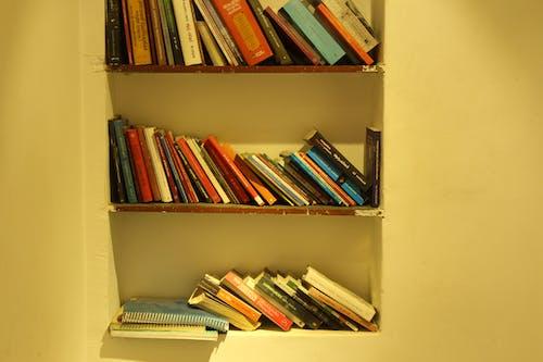 Ingyenes stockfotó könyv, könyvesbolt, könyvespolc, könyvköteg témában
