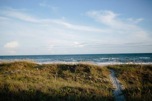 Бесплатное стоковое фото с атлантический океан, атлантический пляж, вода, волны