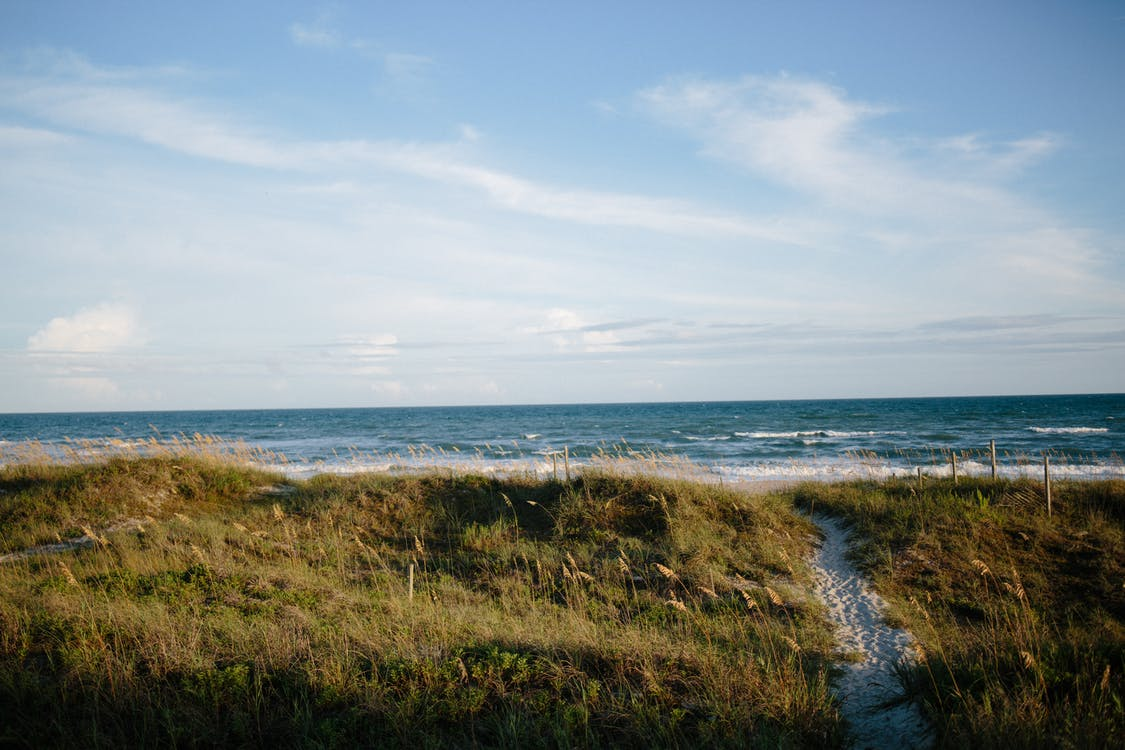 地平線, 夏天, 夏季