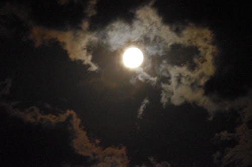 Free stock photo of full moon, nature