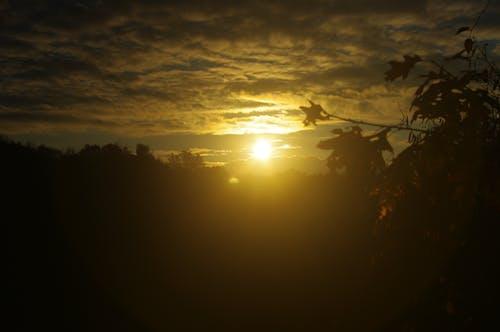 Free stock photo of nature, sunset
