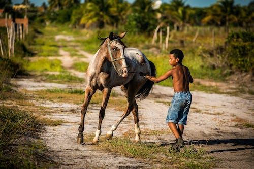 兒童, 動物, 半裸, 哺乳動物 的 免費圖庫相片