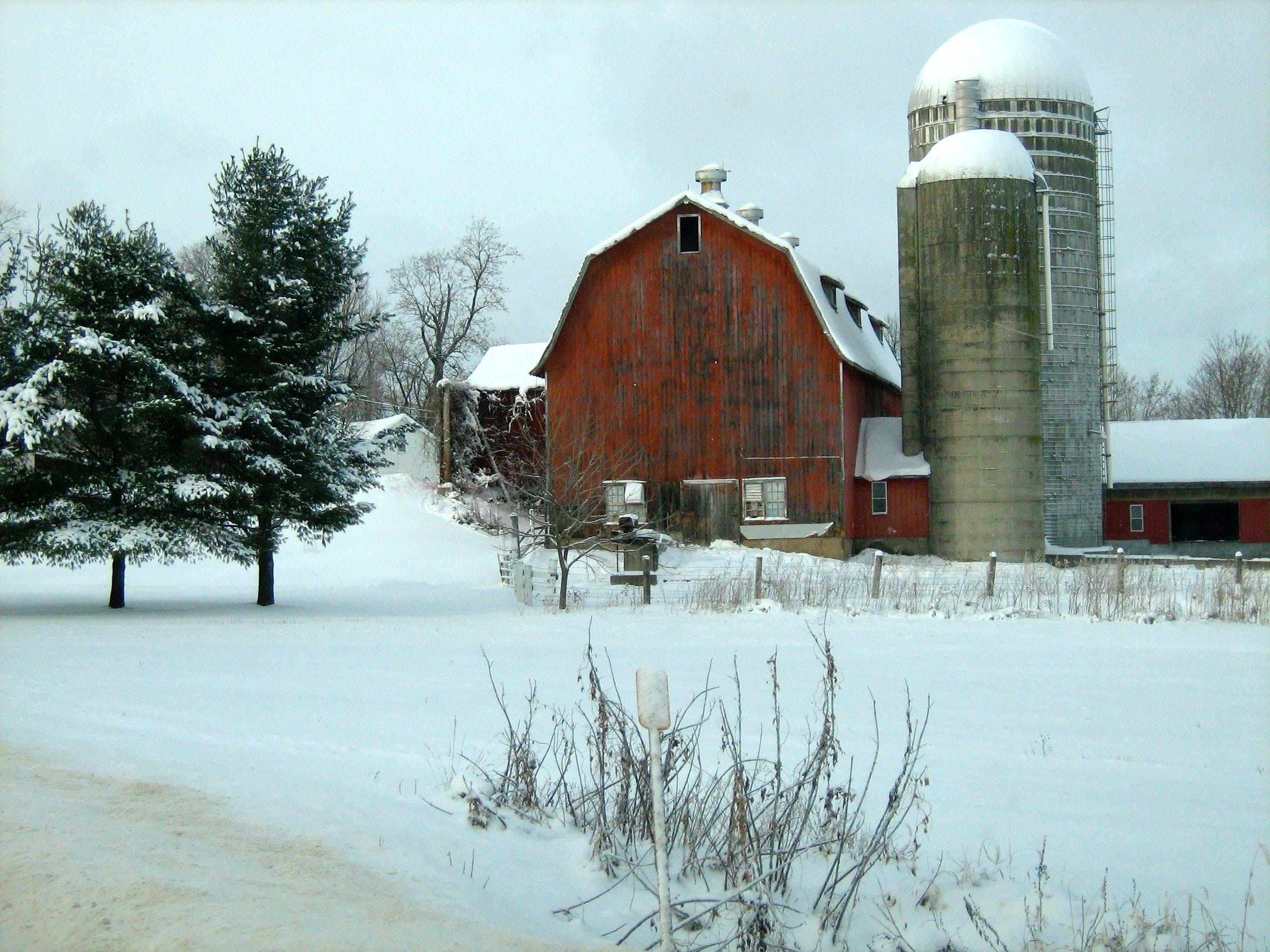 Free stock photo of barn, farm, snow, winter