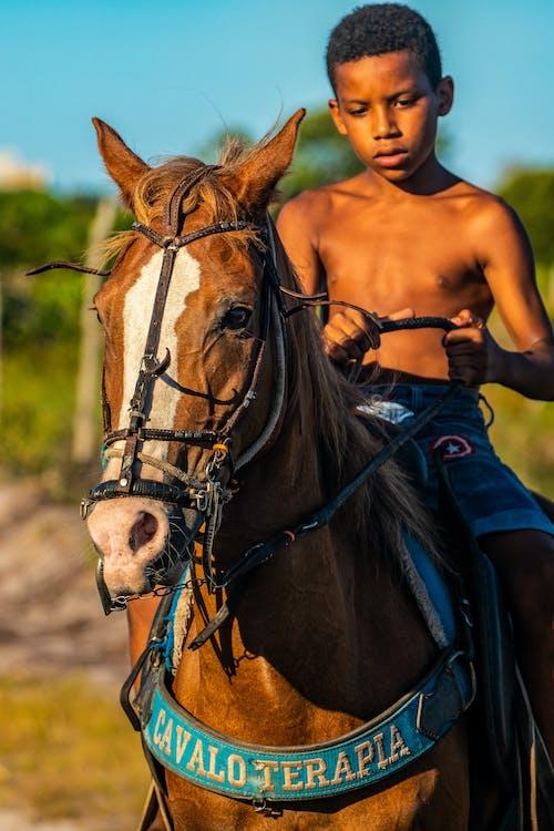 Immagine gratuita di afro-americano, animale, animale domestico, bambino