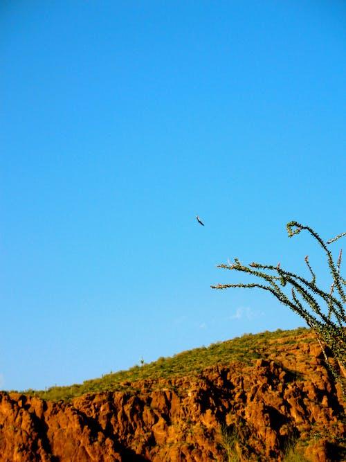 Free stock photo of arizona, cliff, sky