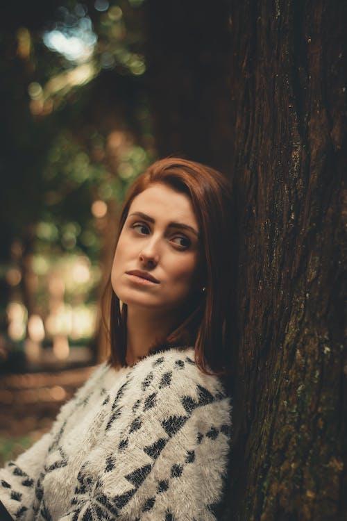 금발, 나무 줄기, 낮, 눈의 무료 스톡 사진